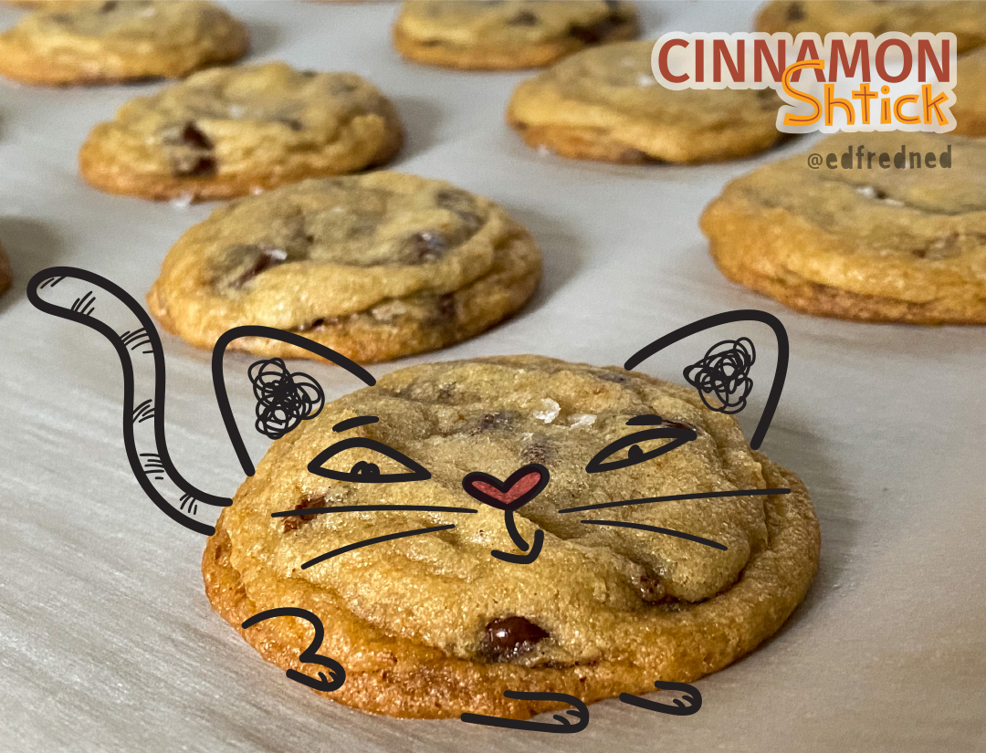 illustration of cat made from a cookie